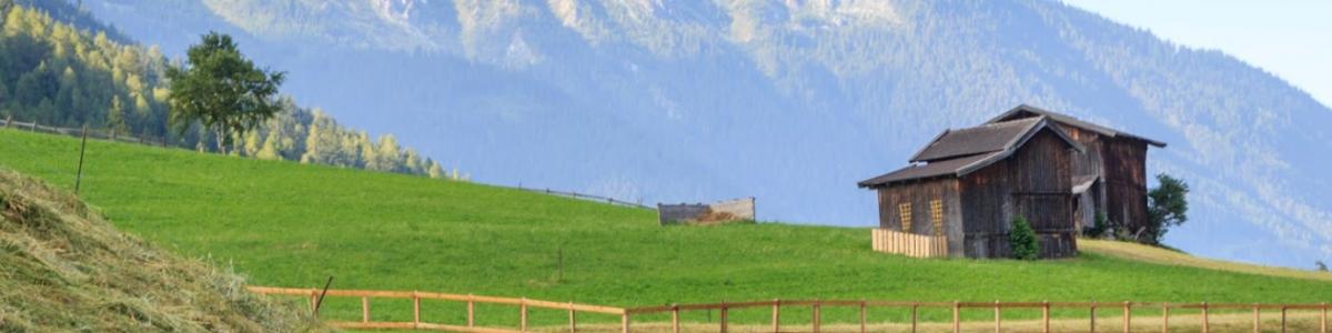 Landwirtschaftskammer Tirol cover
